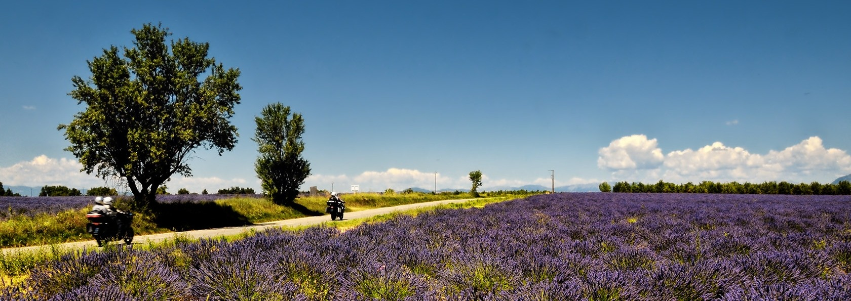 Bonjour Provence - Motorcycle Vacation